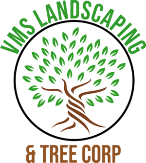 VMS Landscaping & Tree Services